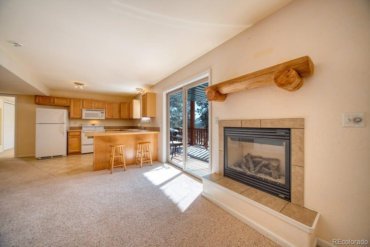 MLS# 3458595 - 9 - 303 Virginia Road #D, Bailey, CO 80421