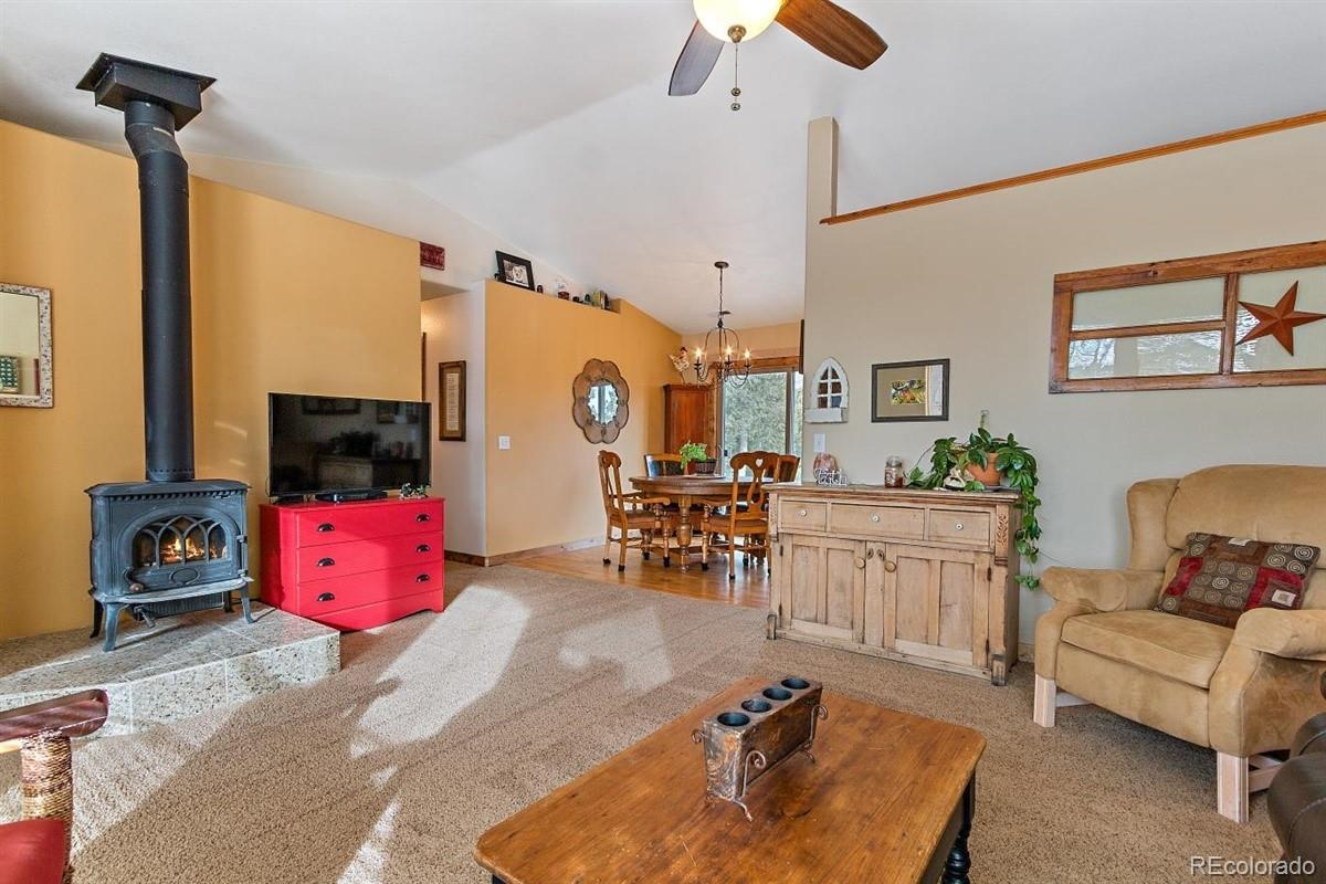 MLS# 3515599 - 6 - 137 Fawn Drive, Bailey, CO 80421