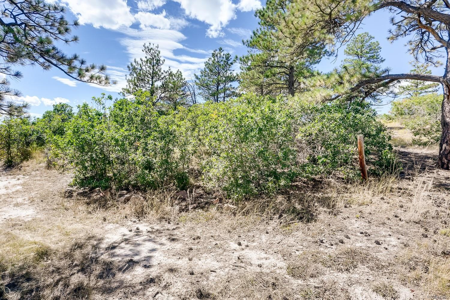 MLS# 3592770 - 28 - 8527 E Greenland Road, Franktown, CO 80116
