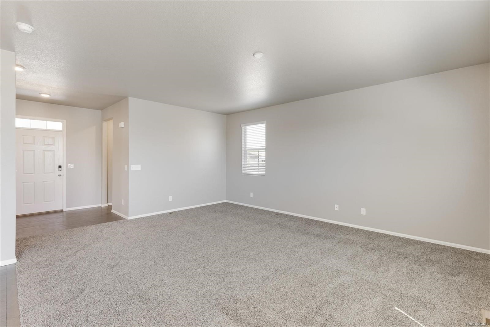 MLS# 3645271 - 5 - 6915 Grainery Court, Timnath, CO 80547