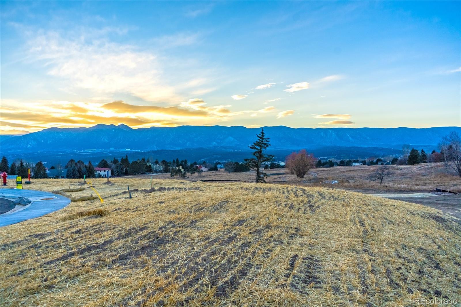 MLS# 3653361 - 4 - 14344 Spyglass Hill Place, Colorado Springs, CO 80132