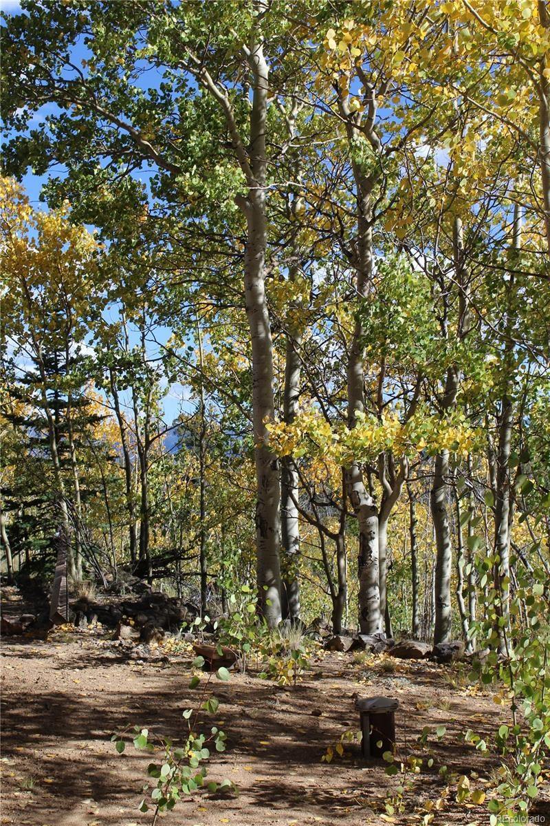 MLS# 3711123 - 24 - 938 Ute Trail, Como, CO 80432