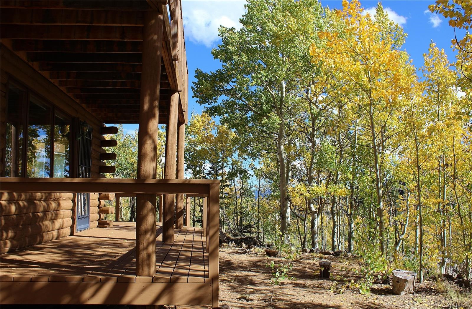 MLS# 3711123 - 6 - 938 Ute Trail, Como, CO 80432