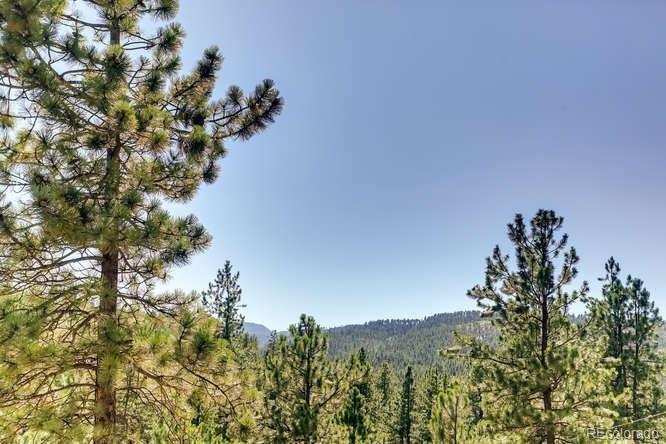 MLS# 4032743 - 29 - 1208 Alpine Drive, Sedalia, CO 80135