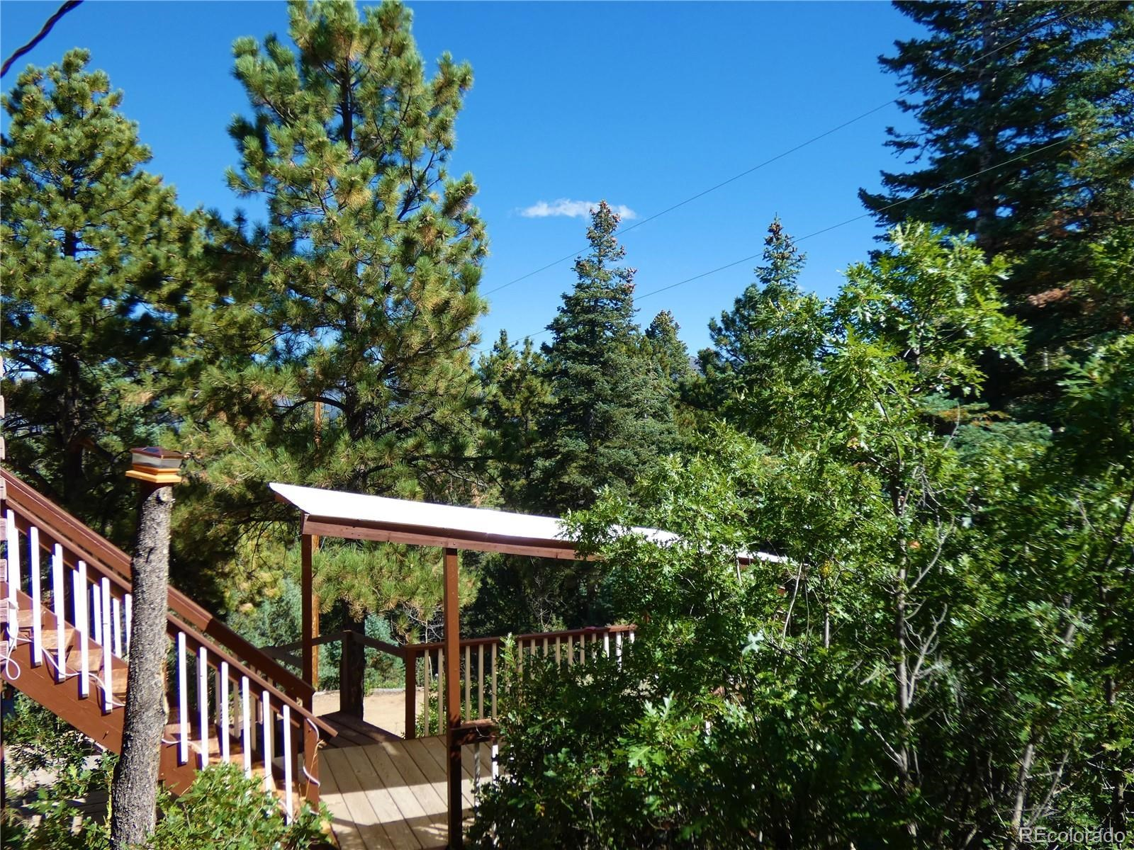 MLS# 4075467 - 6 - 4109 Forest Court, Howard, CO 81233