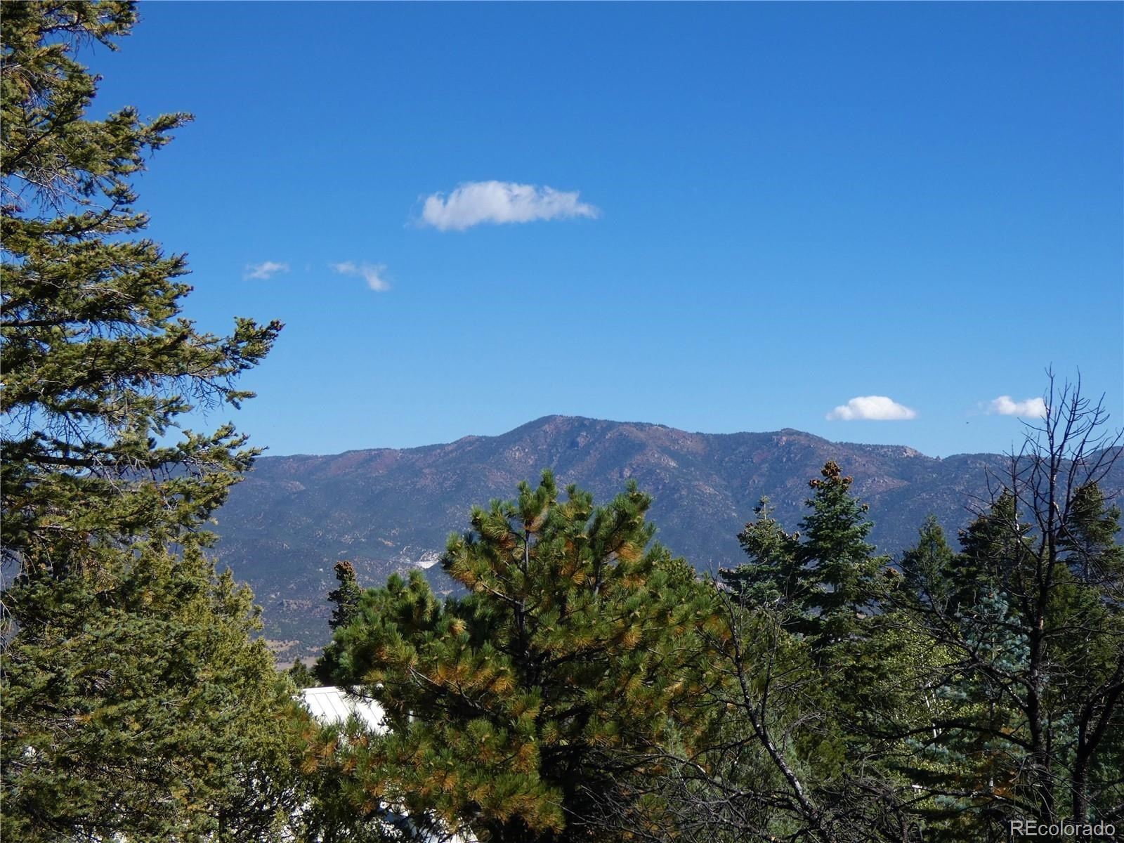 MLS# 4075467 - 10 - 4109 Forest Court, Howard, CO 81233