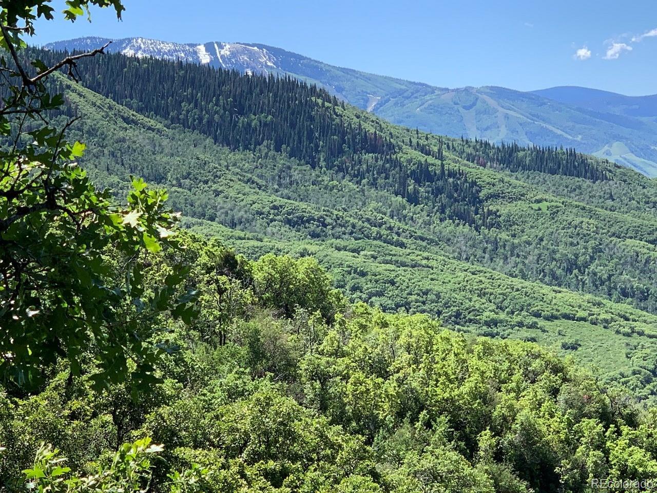 MLS# 4125204 - 2 - 32820 S Elk Drive, Steamboat Springs, CO 80487