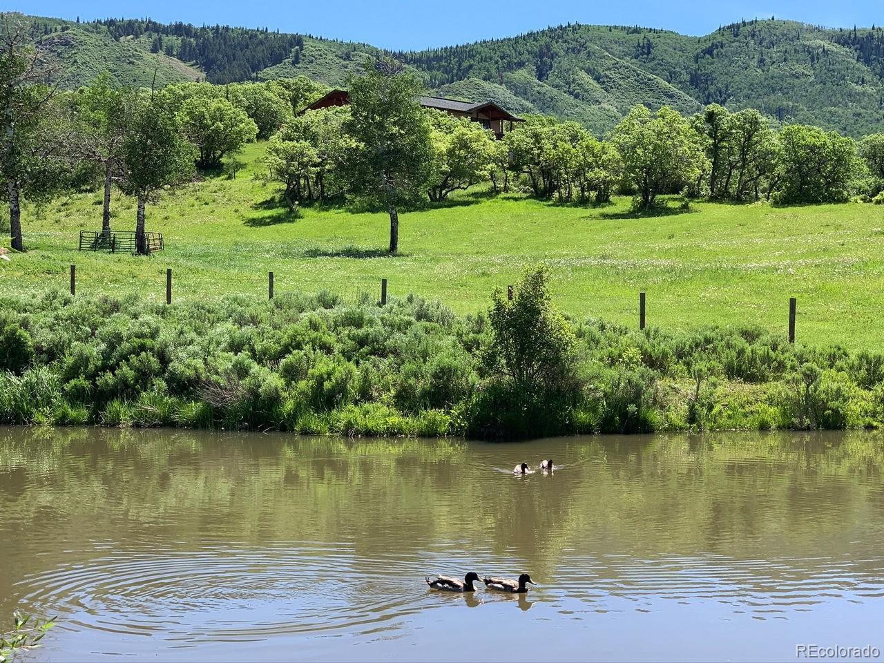MLS# 4125204 - 12 - 32820 S Elk Drive, Steamboat Springs, CO 80487