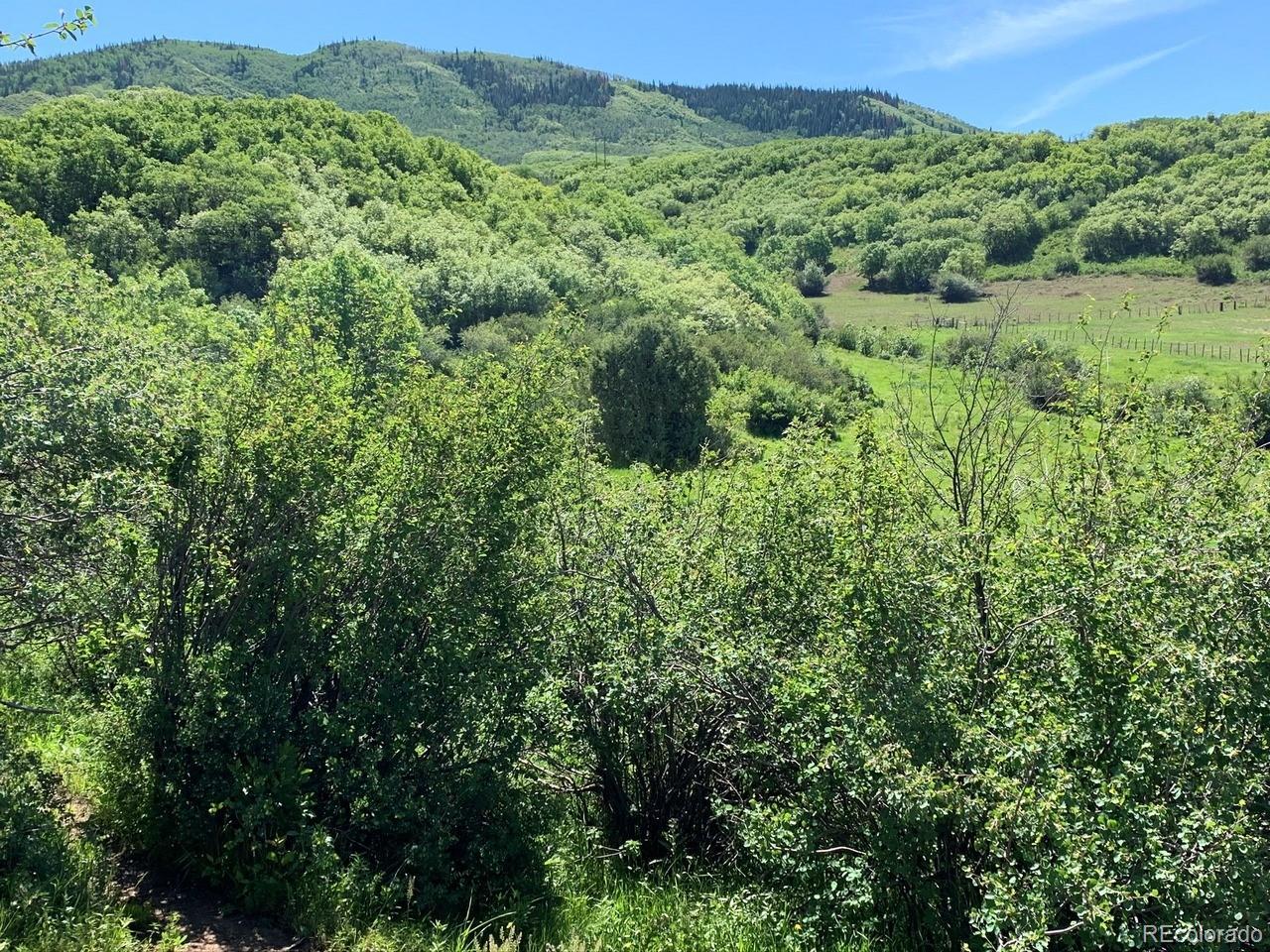 MLS# 4125204 - 13 - 32820 S Elk Drive, Steamboat Springs, CO 80487