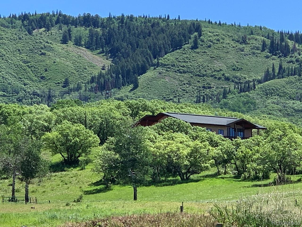 MLS# 4125204 - 8 - 32820 S Elk Drive, Steamboat Springs, CO 80487