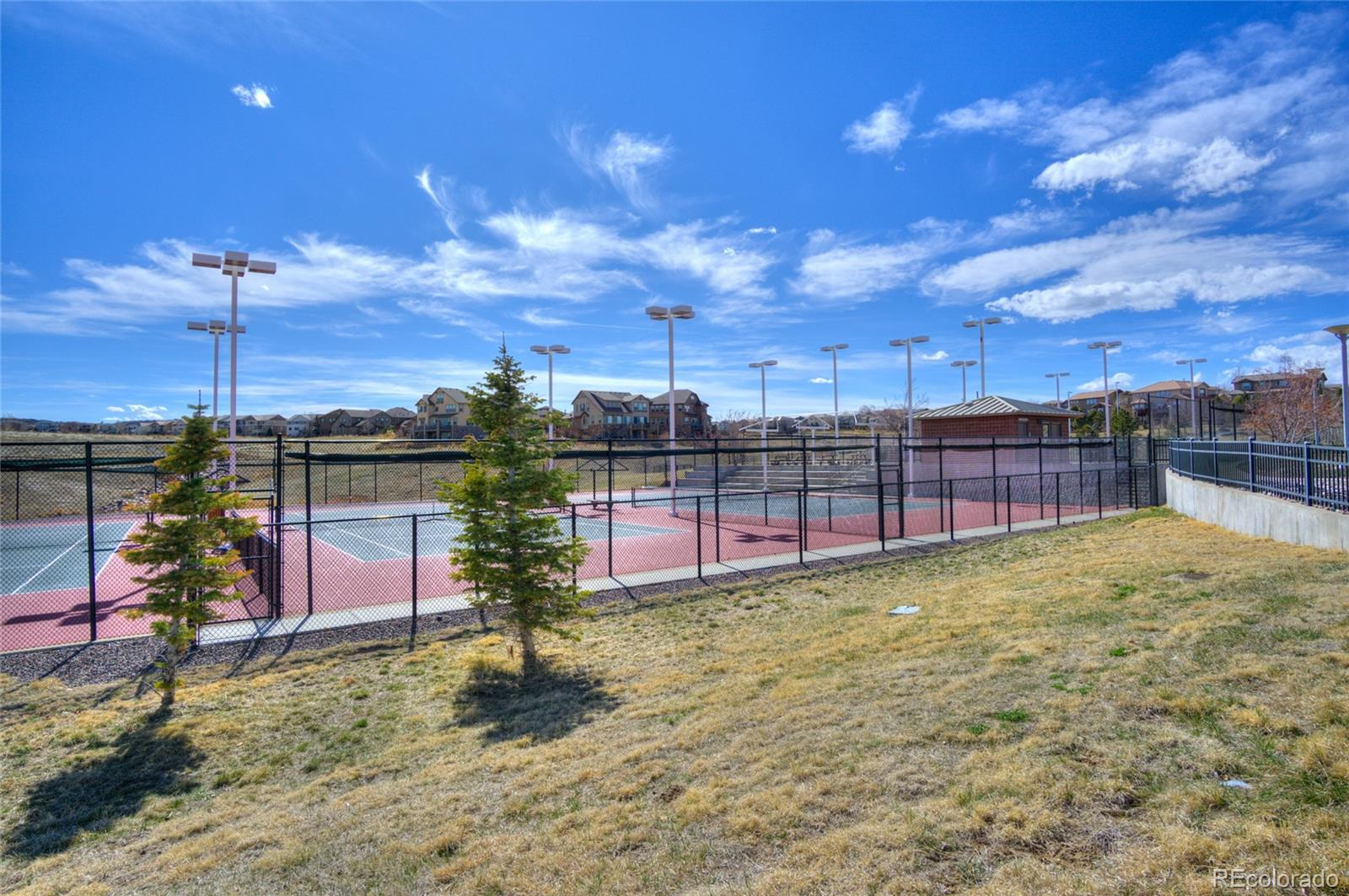 MLS# 4282289 - 31 - 10566 Tracewood Circle, Highlands Ranch, CO 80130
