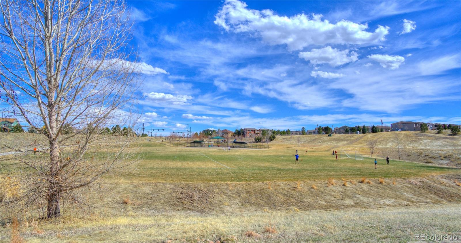 MLS# 4282289 - 32 - 10566 Tracewood Circle, Highlands Ranch, CO 80130