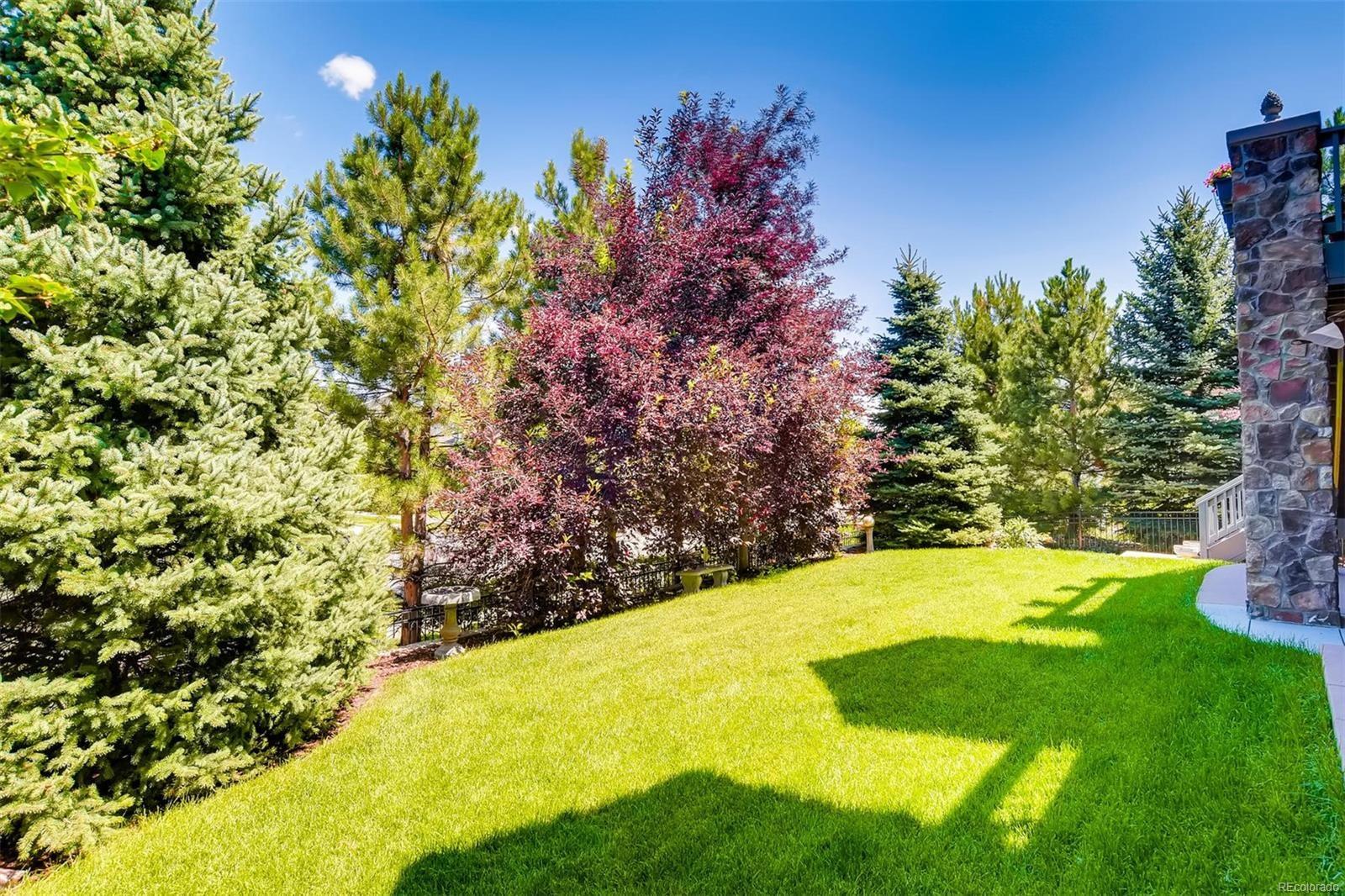 MLS# 4553007 - 15 - 9085 Blufftop Way, Lone Tree, CO 80124