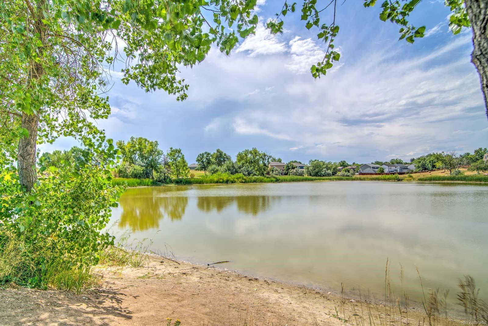 MLS# 4599263 - 23 - 1624 Nueva Vista Drive, Denver, CO 80229