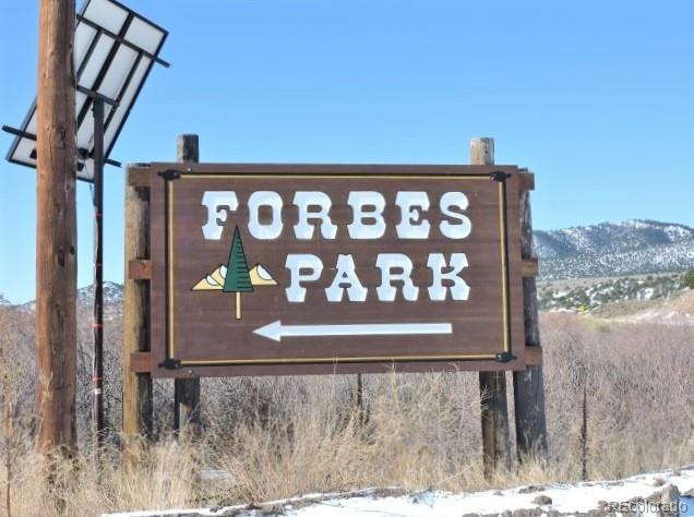 MLS# 4675666 - 9 - 947 Henson Place, Forbes Park, CO 81133