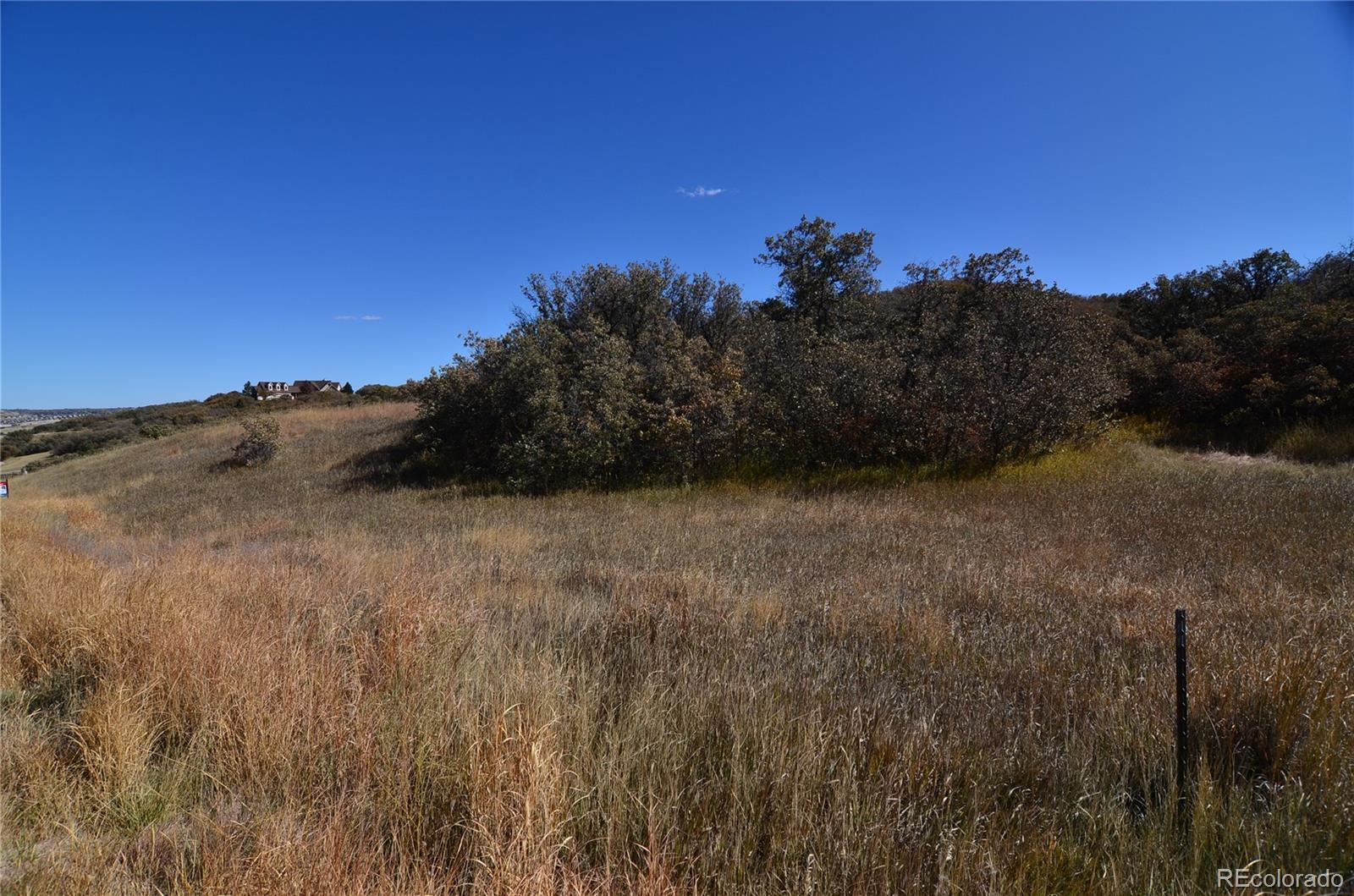 MLS# 4778285 - 21 - 1364 Colt Circle, Castle Rock, CO 80109