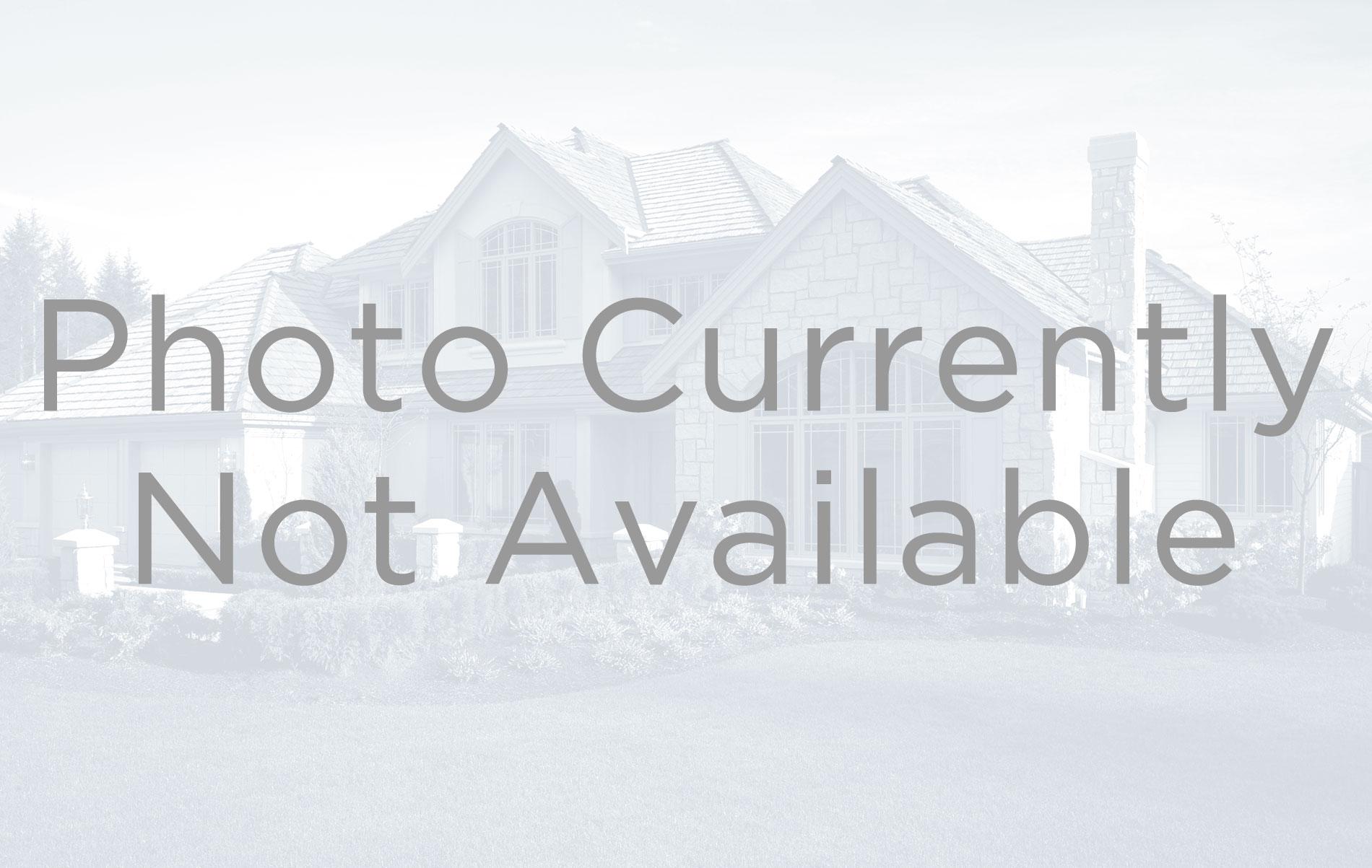 MLS# 4778285 - 22 - 1364 Colt Circle, Castle Rock, CO 80109