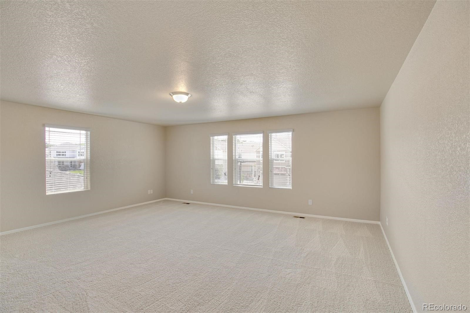 MLS# 4867430 - 16 - 915 Camberly Drive, Windsor, CO 80550