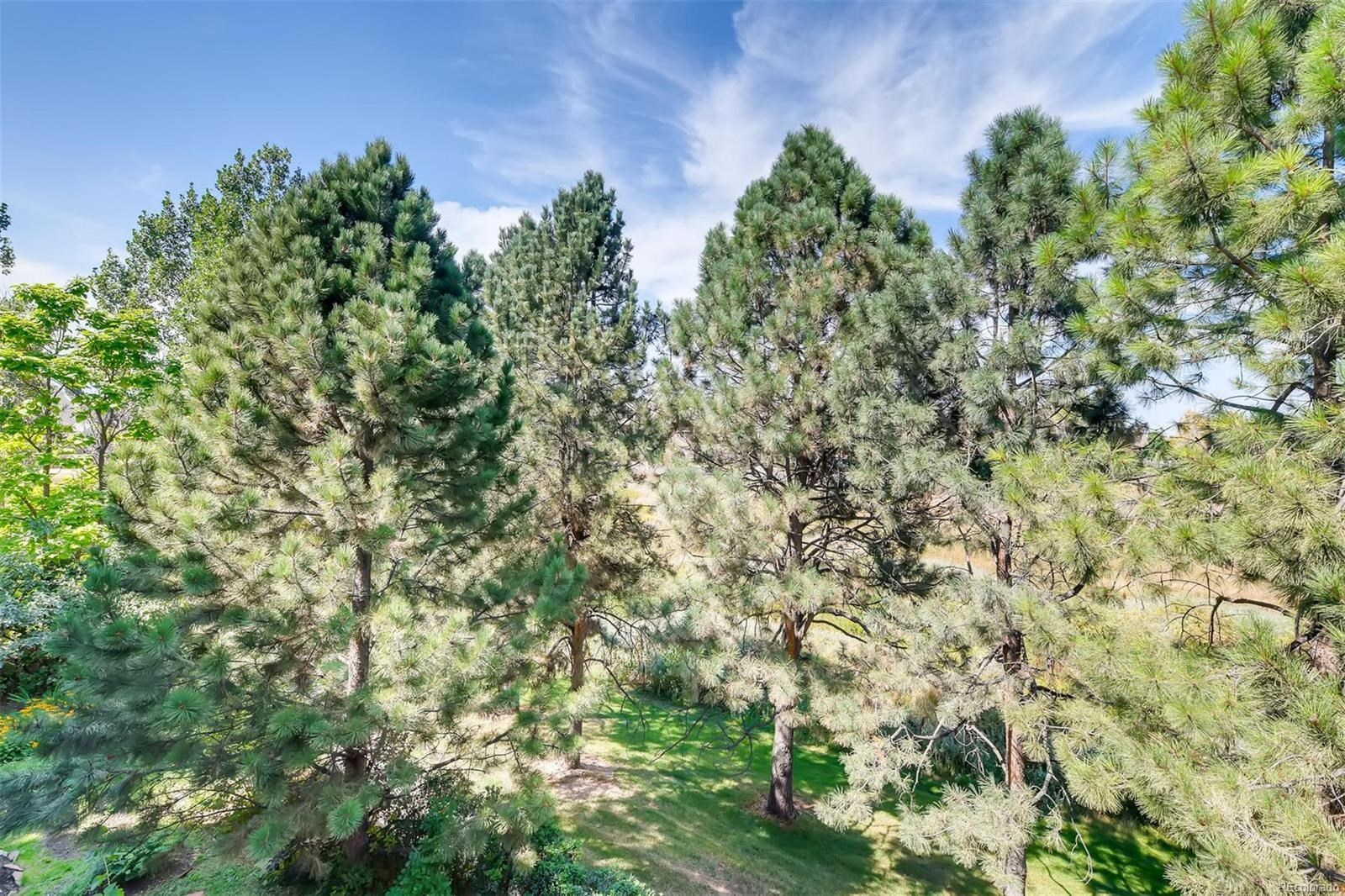 MLS# 4900071 - 25 - 1627 W Canal Court, Littleton, CO 80120