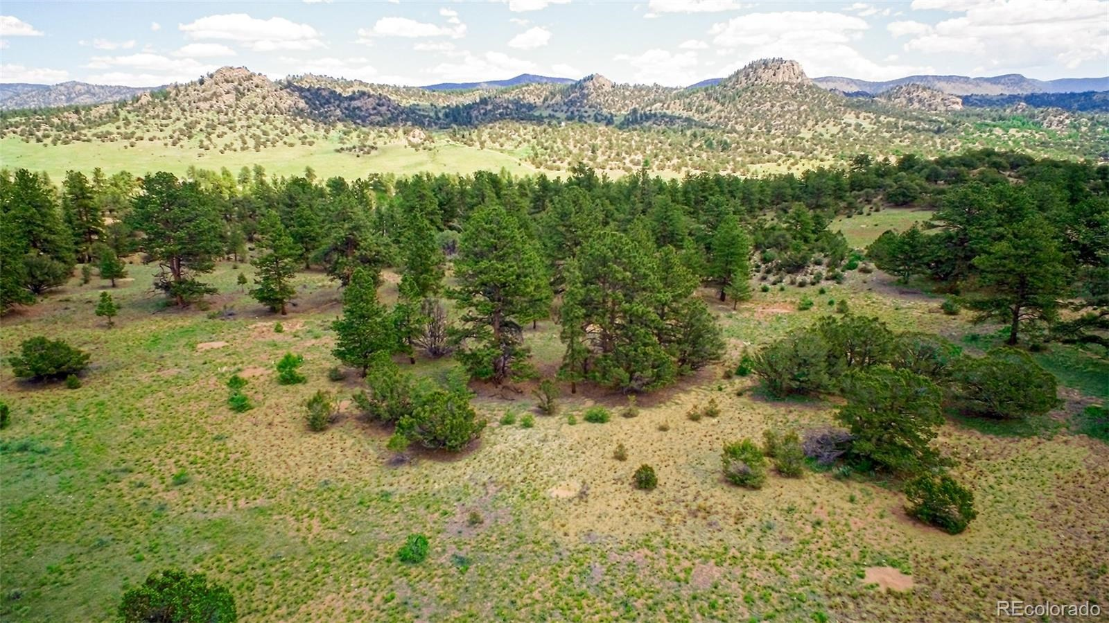 MLS# 5032534 - 18 - 008 Big Sandy Drive , Buena Vista, CO 81211