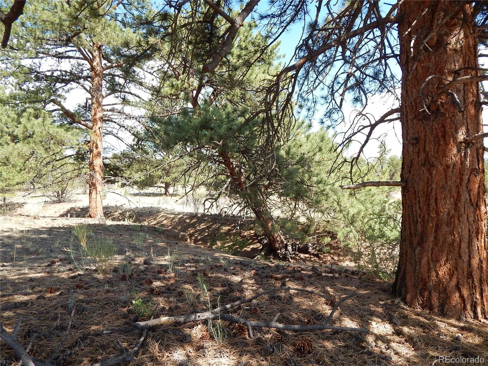 MLS# 5032534 - 22 - 008 Big Sandy Drive , Buena Vista, CO 81211