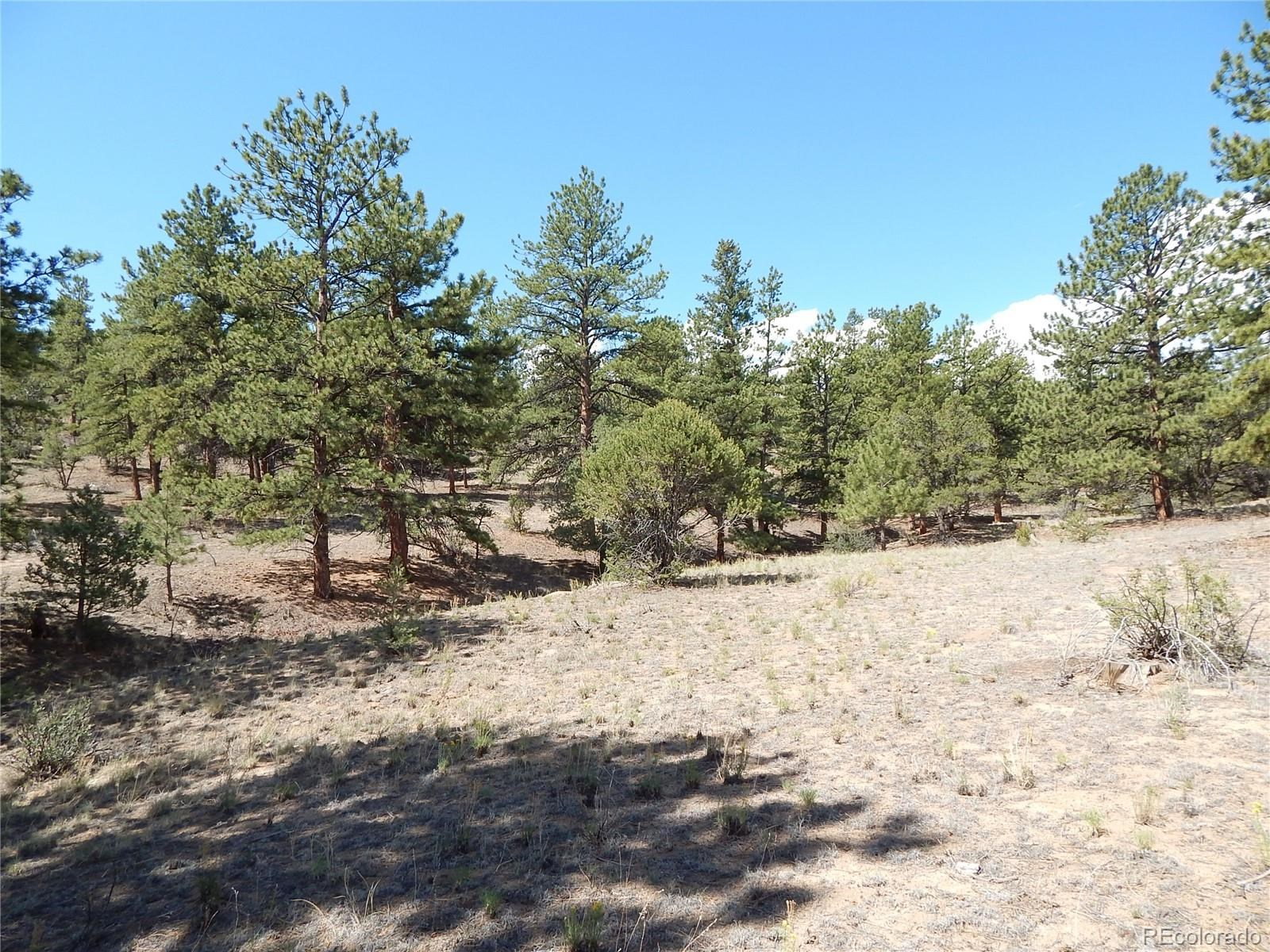 MLS# 5032534 - 25 - 008 Big Sandy Drive , Buena Vista, CO 81211