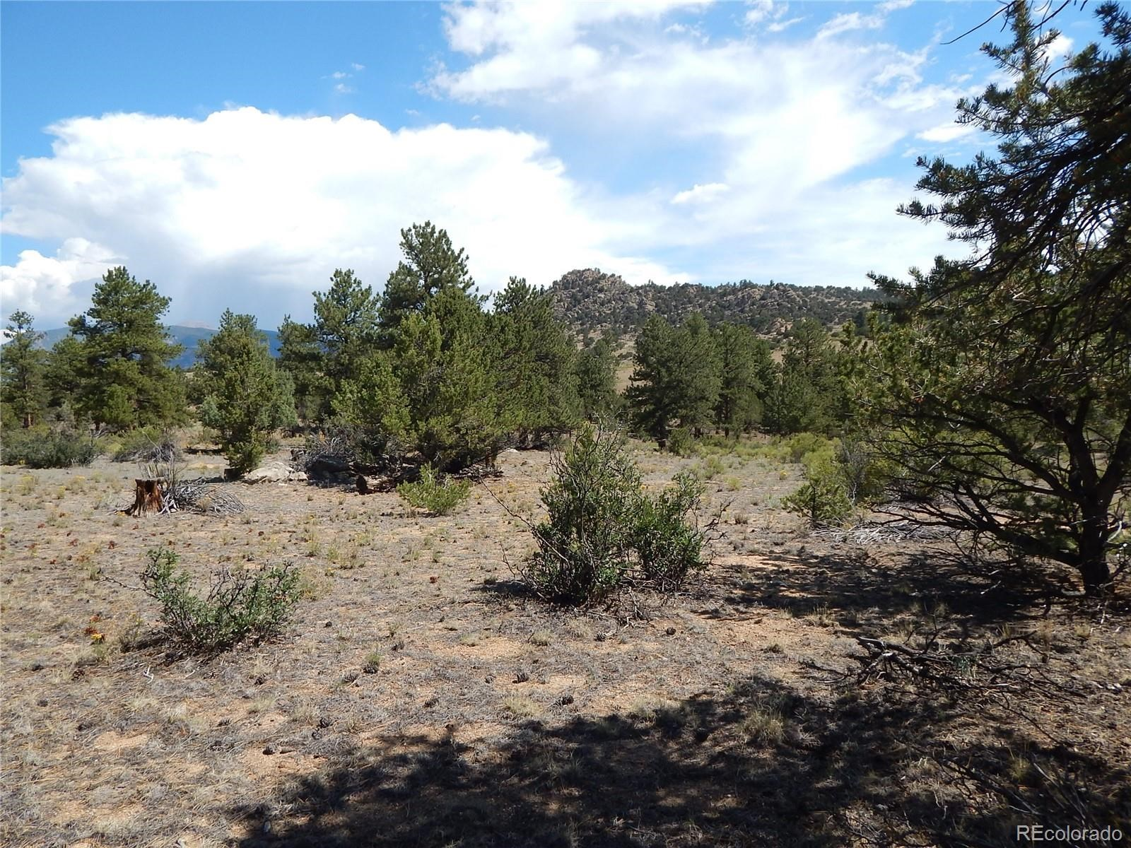 MLS# 5032534 - 26 - 008 Big Sandy Drive , Buena Vista, CO 81211