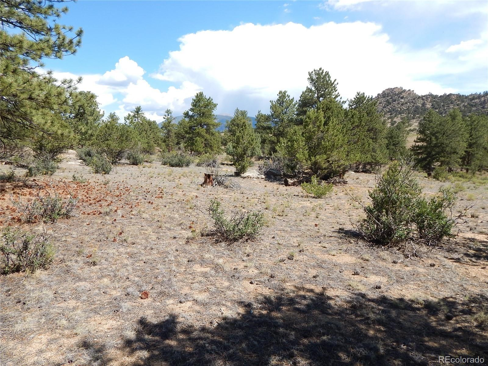 MLS# 5032534 - 27 - 008 Big Sandy Drive , Buena Vista, CO 81211