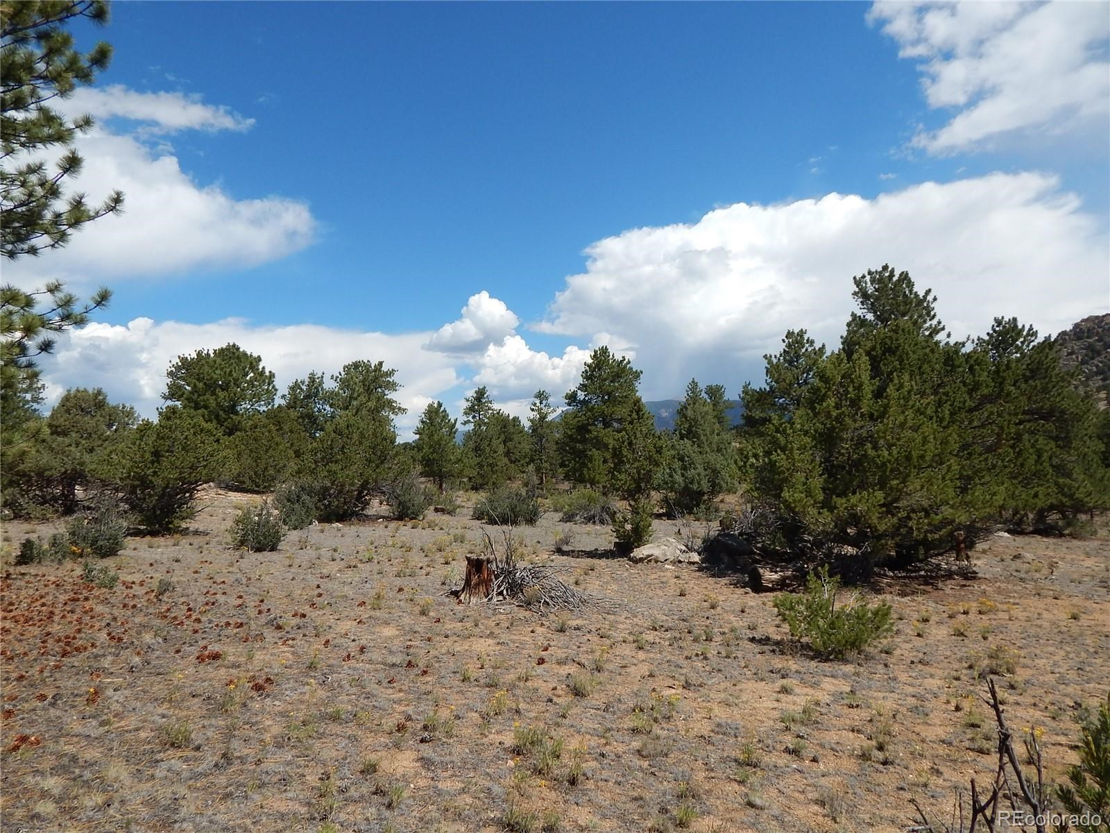 MLS# 5032534 - 28 - 008 Big Sandy Drive , Buena Vista, CO 81211