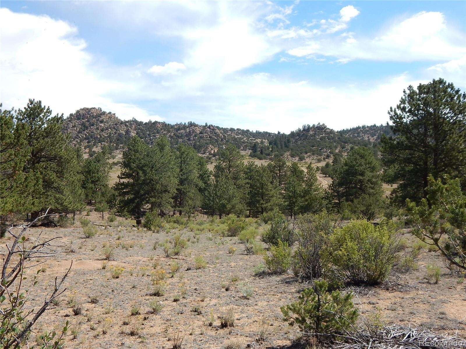 MLS# 5032534 - 29 - 008 Big Sandy Drive , Buena Vista, CO 81211