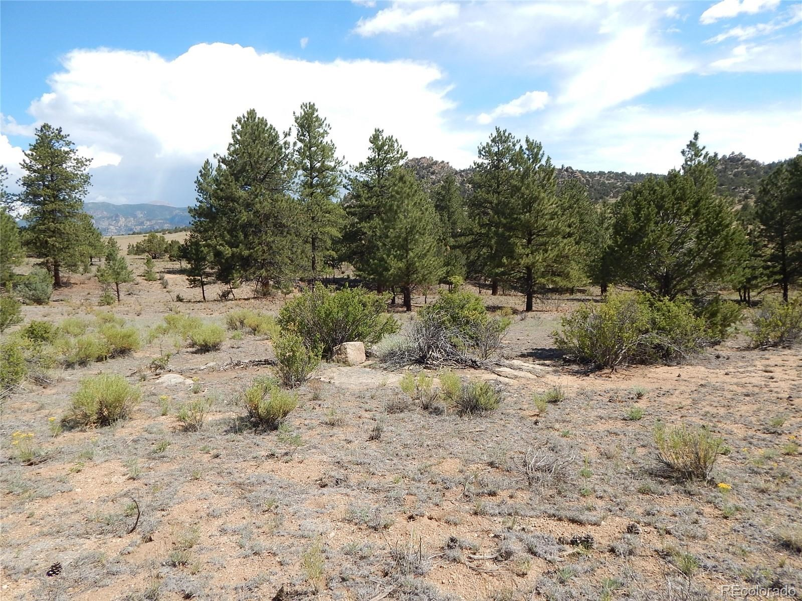 MLS# 5032534 - 30 - 008 Big Sandy Drive , Buena Vista, CO 81211