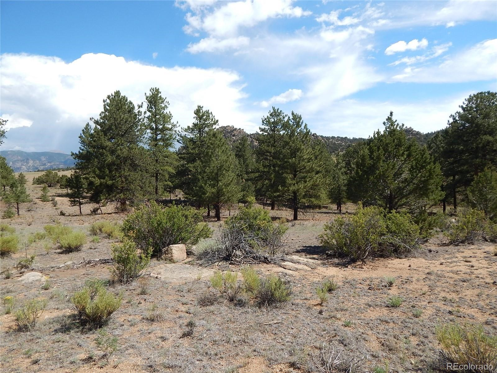 MLS# 5032534 - 31 - 008 Big Sandy Drive , Buena Vista, CO 81211