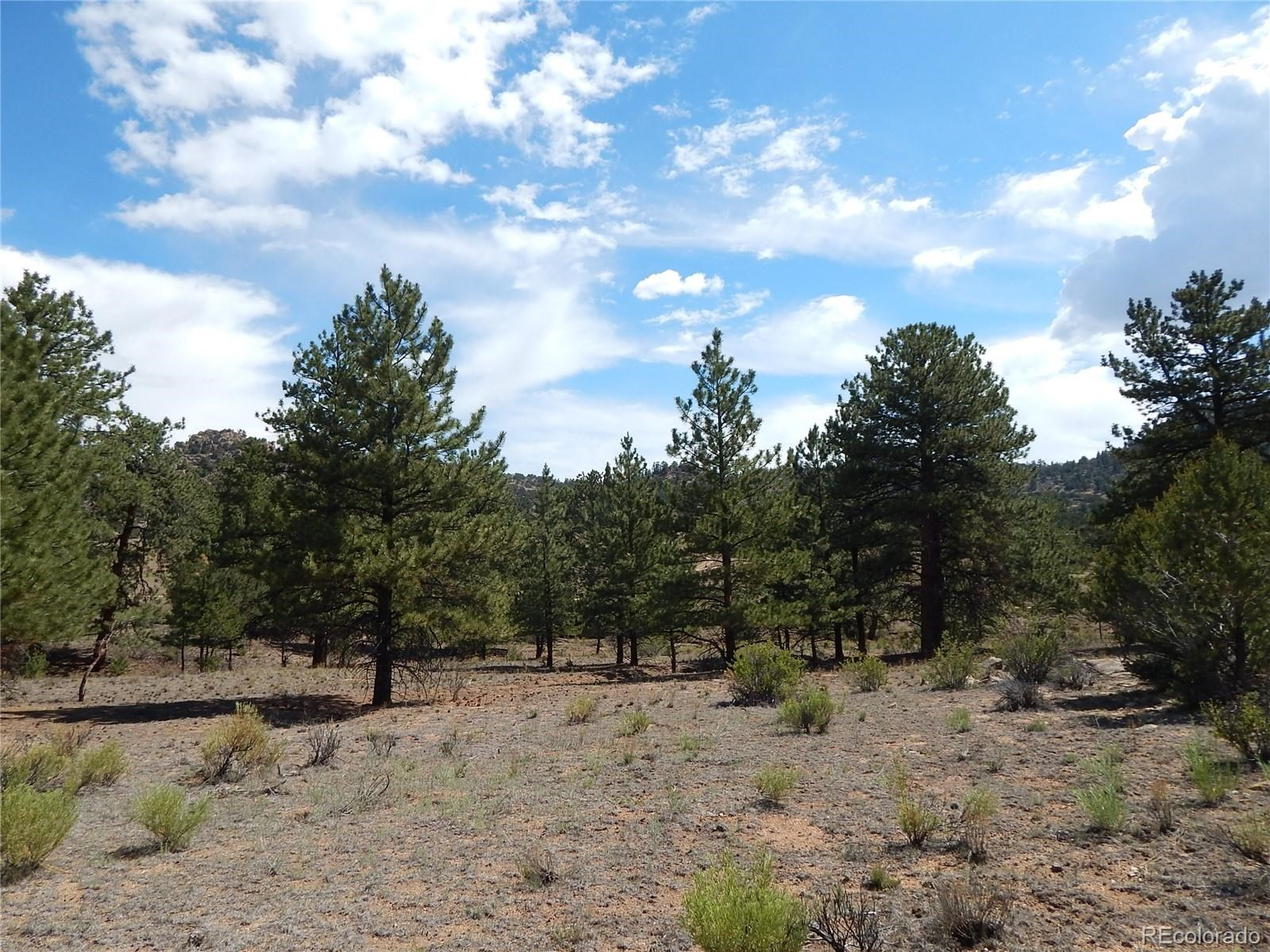 MLS# 5032534 - 32 - 008 Big Sandy Drive , Buena Vista, CO 81211