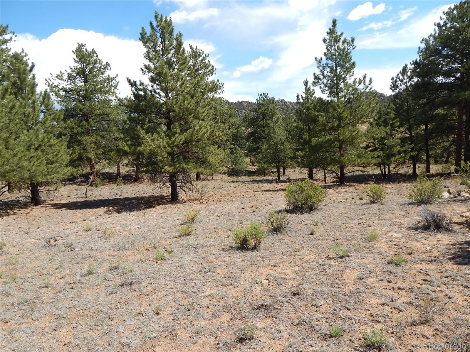 MLS# 5032534 - 33 - 008 Big Sandy Drive , Buena Vista, CO 81211