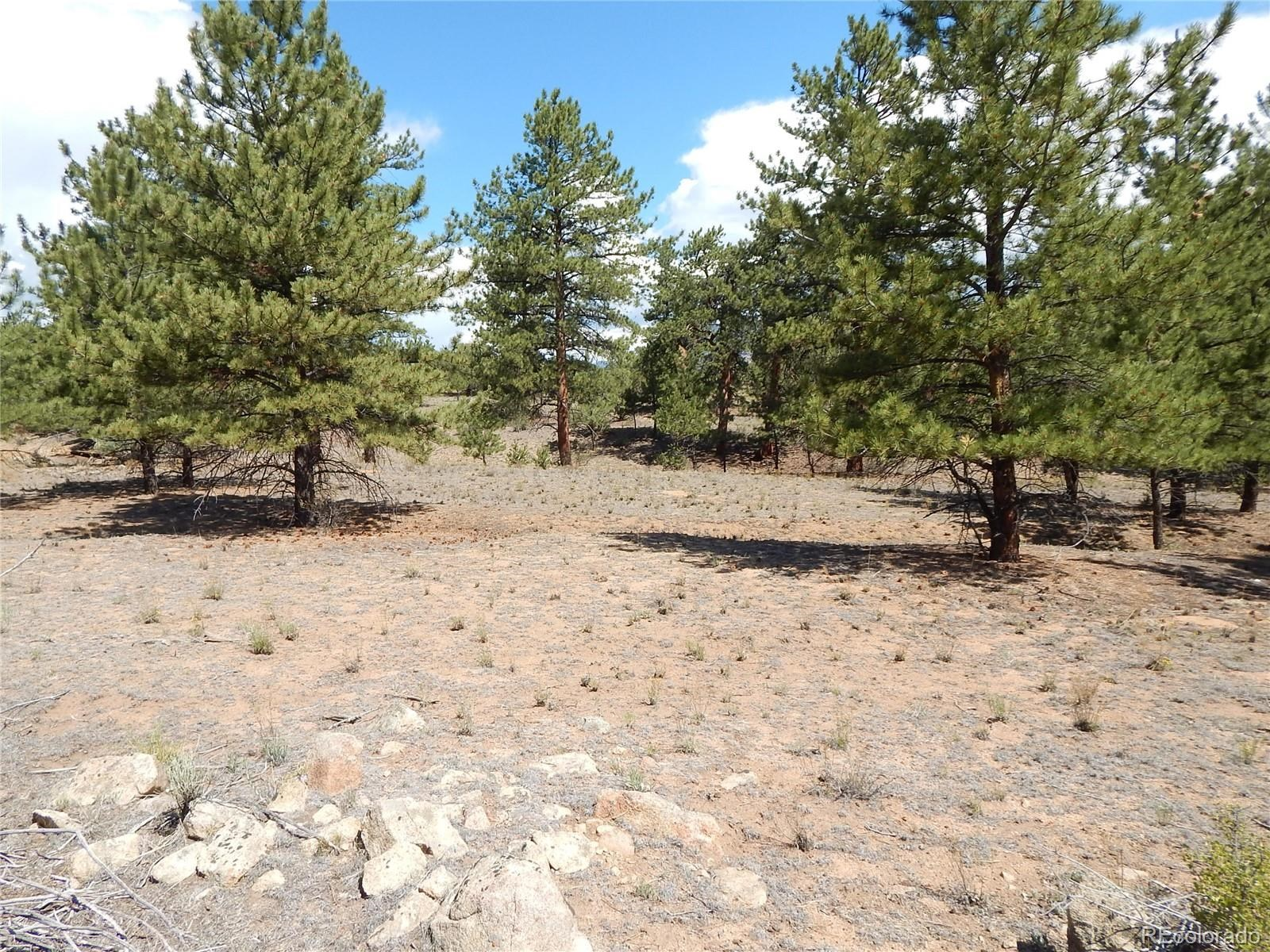 MLS# 5032534 - 34 - 008 Big Sandy Drive , Buena Vista, CO 81211