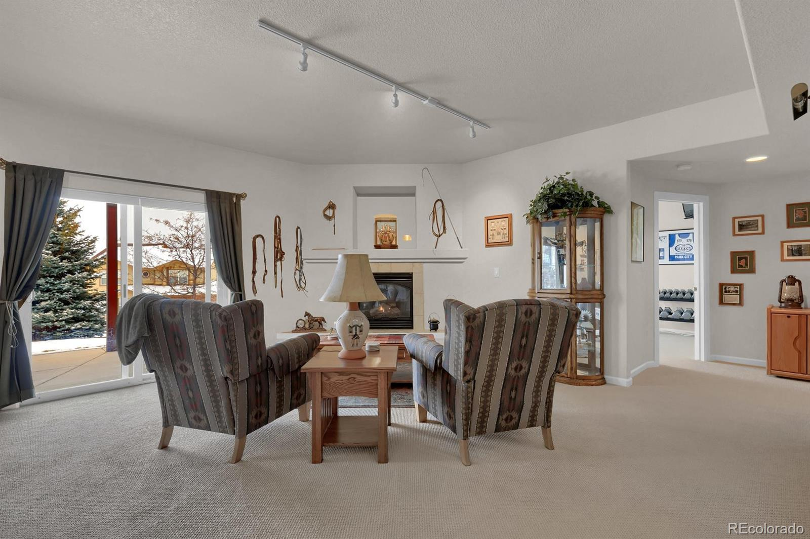 MLS# 5159811 - 28 - 207 Green Rock Place, Monument, CO 80132