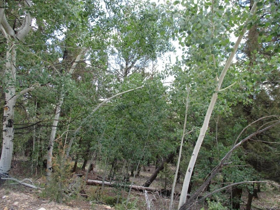 MLS# 5164513 -   Redhill Forest, Fairplay, CO 80440