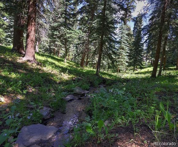 MLS# 5212547 - 30 - 12077 Elk Trail Road, Conifer, CO 80433