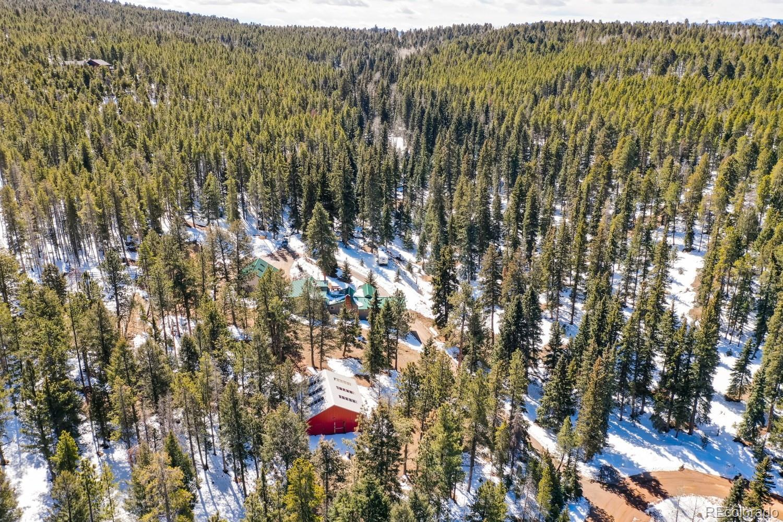 MLS# 5212547 - 38 - 12077 Elk Trail Road, Conifer, CO 80433
