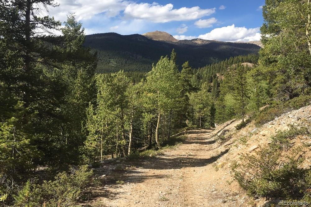 MLS# 5305728 - 12 - Forest Service Rd. 890 Forest, Gunnison, CO 81230