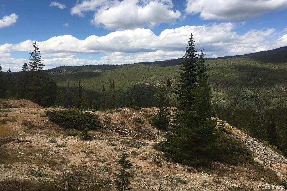 MLS# 5305728 - 13 - Forest Service Rd. 890 Forest, Gunnison, CO 81230