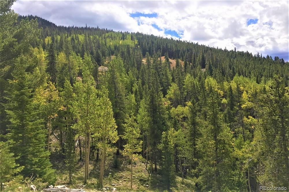 MLS# 5305728 - 16 - Forest Service Rd. 890 Forest, Gunnison, CO 81230