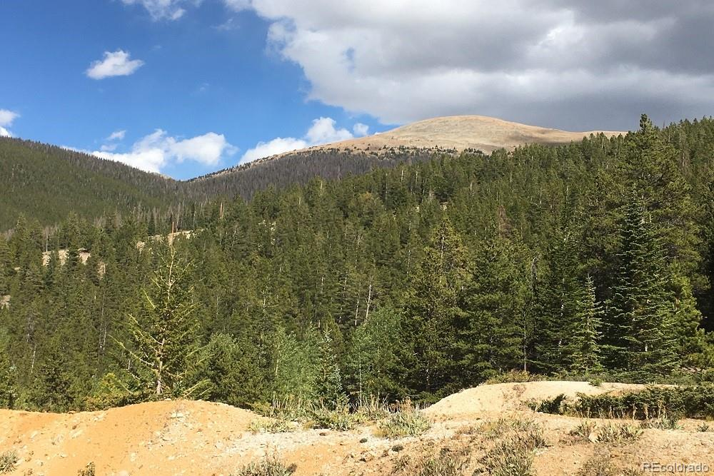 MLS# 5305728 - 7 - Forest Service Rd. 890 Forest, Gunnison, CO 81230