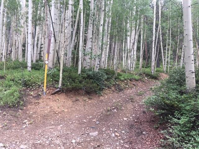 MLS# 5305728 - 9 - Forest Service Rd. 890 Forest, Gunnison, CO 81230