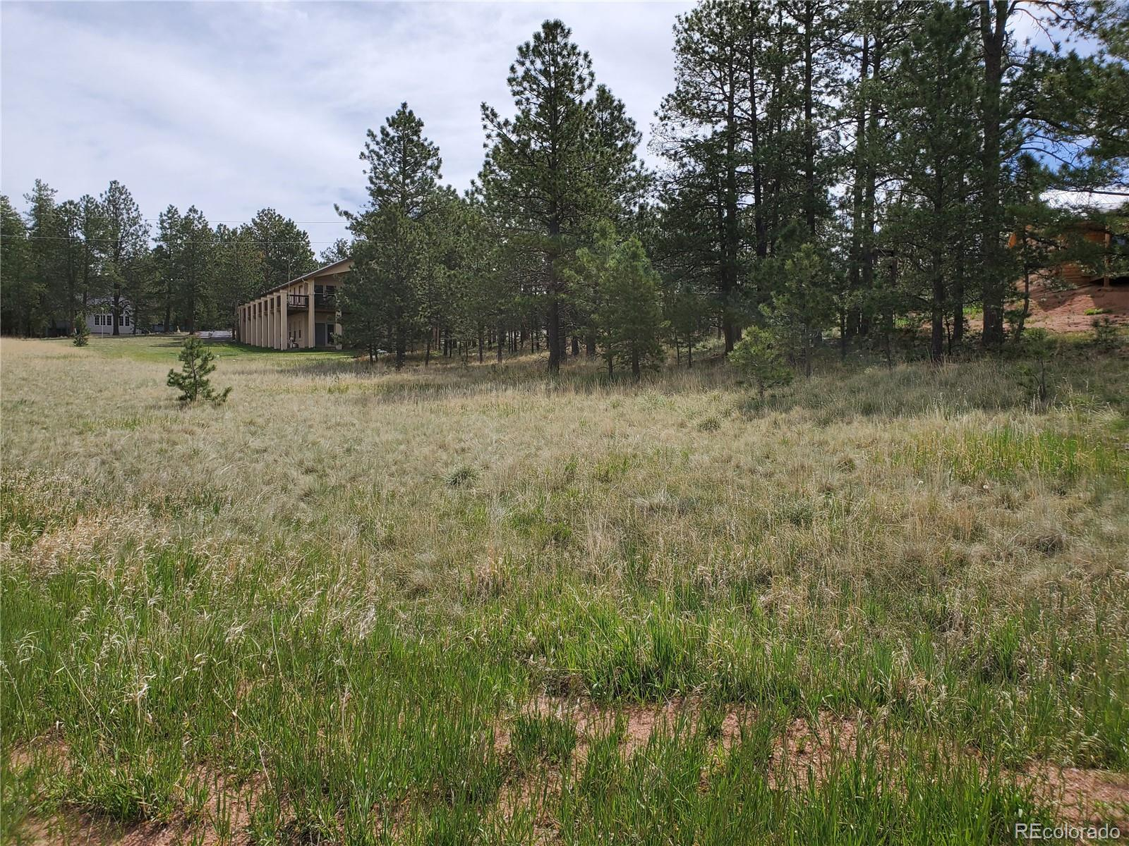 MLS# 5330137 - 3 - 484 Duesouth Road, Florissant, CO 80816