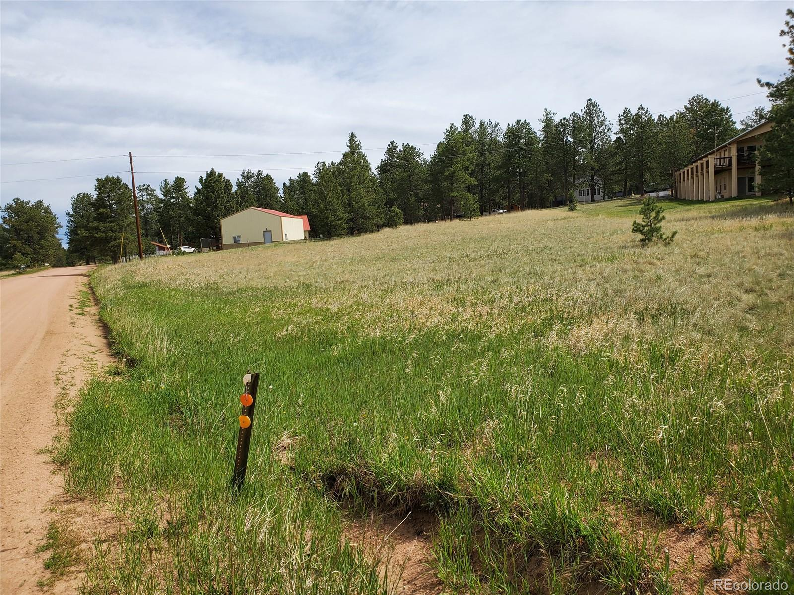 MLS# 5330137 - 4 - 484 Duesouth Road, Florissant, CO 80816