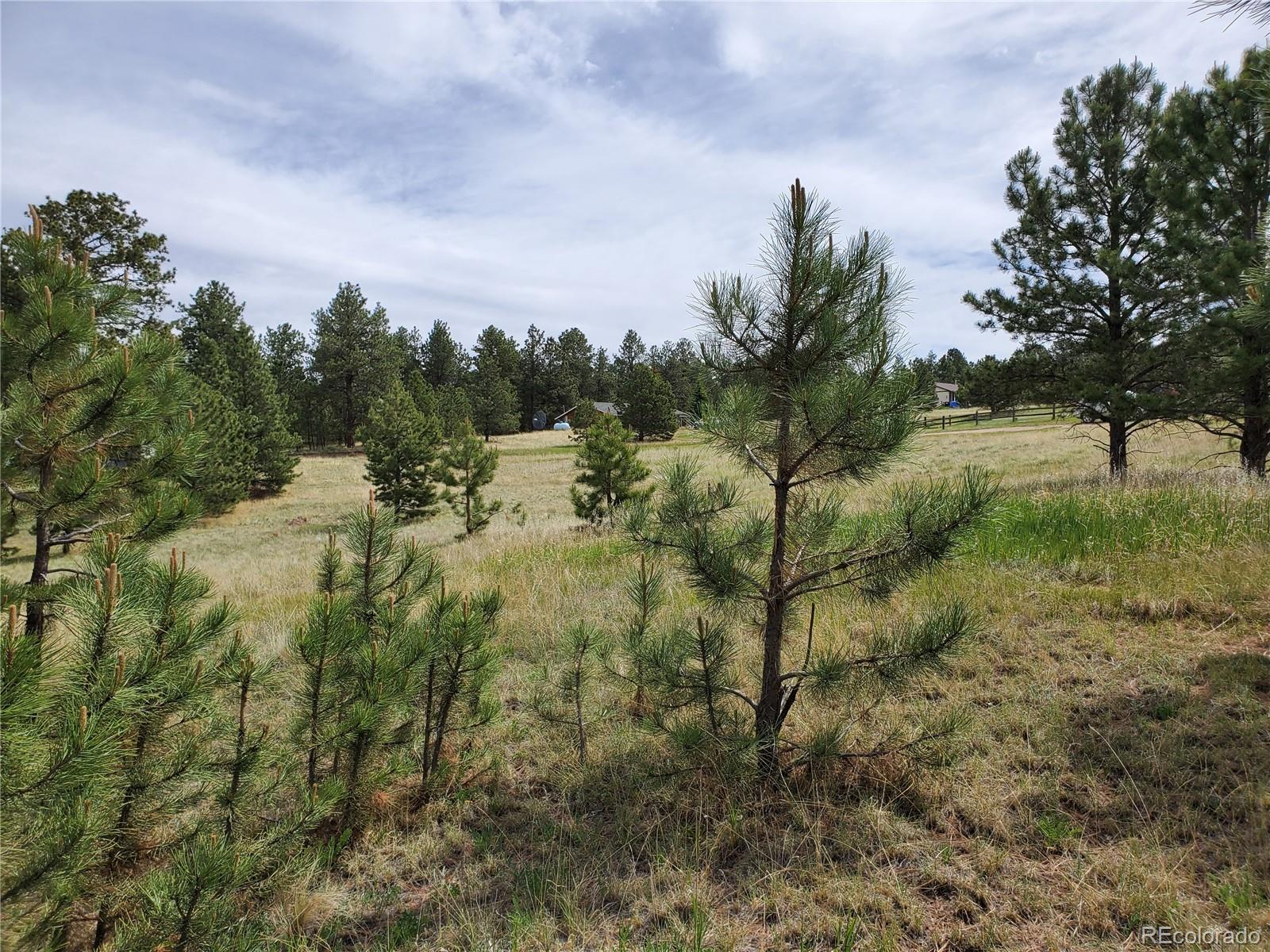 MLS# 5330137 - 5 - 484 Duesouth Road, Florissant, CO 80816
