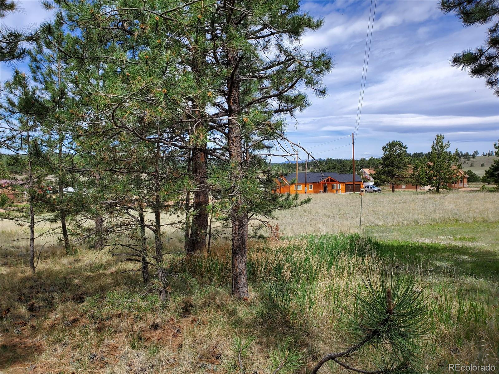 MLS# 5330137 - 9 - 484 Duesouth Road, Florissant, CO 80816