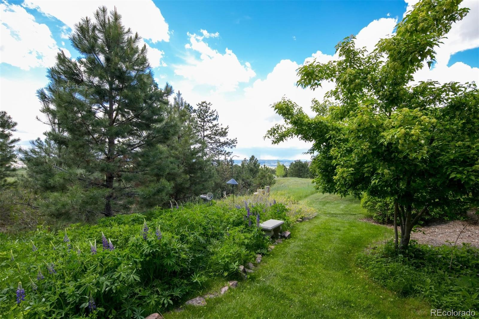 MLS# 5435747 - 38 - 5085 Hidden Pond Place, Castle Rock, CO 80108