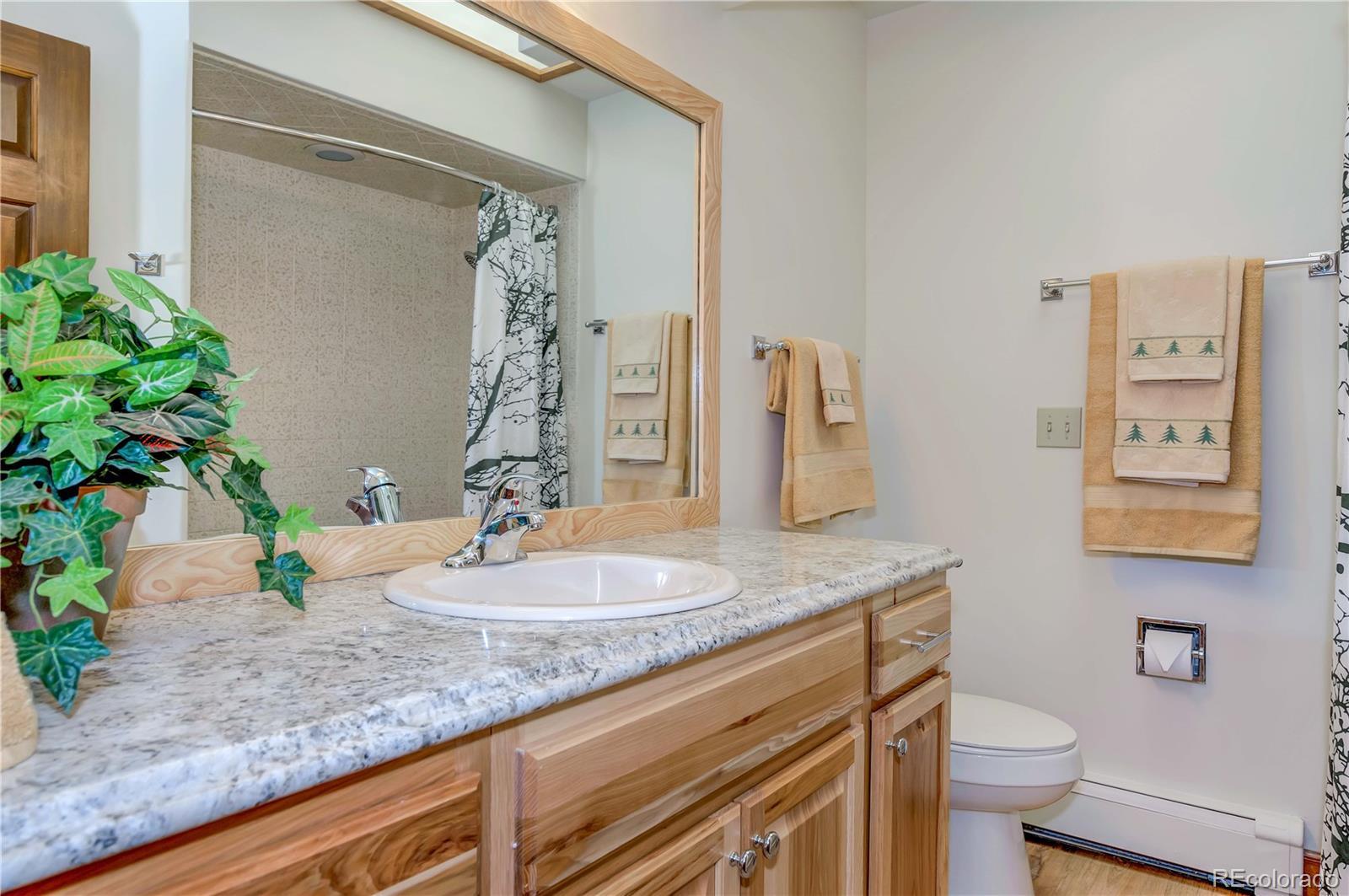 MLS# 5539974 - 21 - 5505 Saddle Rock Place, Colorado Springs, CO 80918